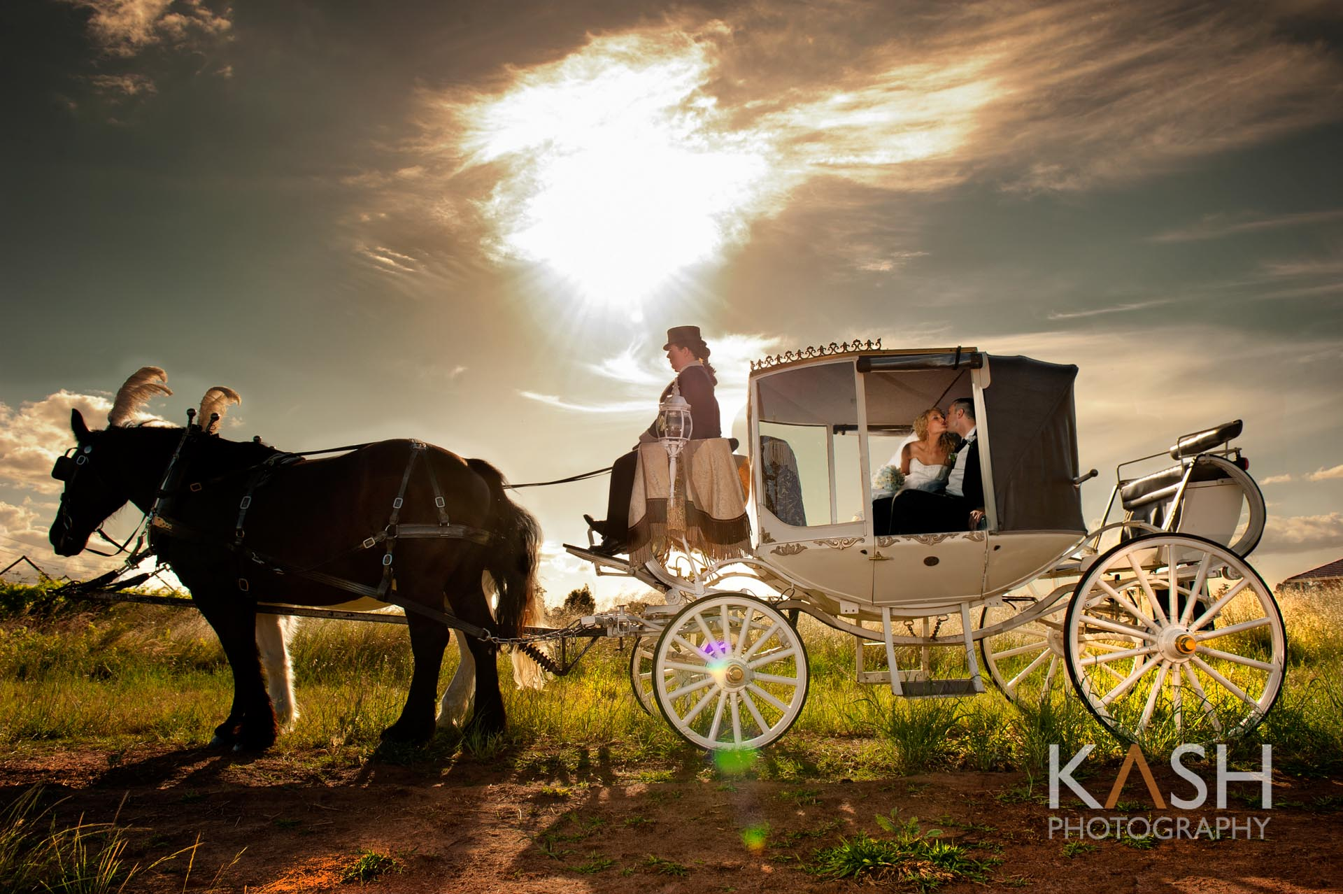 KASH PHOTOGRAPHY HORSE CARRIAGE